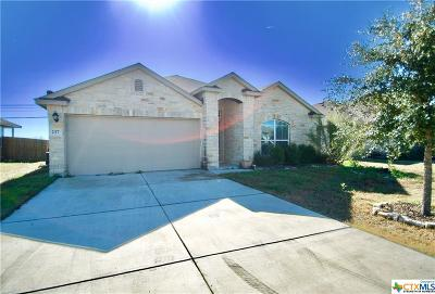 San Marcos Single Family Home For Sale: 237 Teron Drive