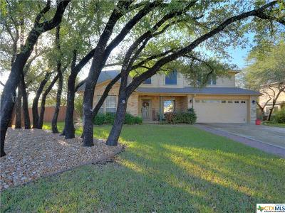 Leander Single Family Home For Sale: 3301 Napa Valley
