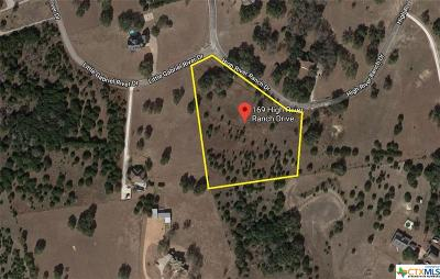 Williamson County Residential Lots & Land For Sale: 169 High River Ranch