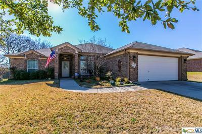 Belton Single Family Home For Sale: 1507 Loving Trail