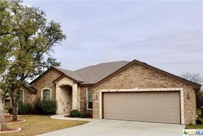 Belton Single Family Home For Sale: 3218 Twin Ridge