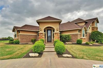 Belton Single Family Home For Sale: 120 Mogollon