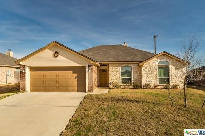 Rental For Rent: 501 W Little Dipper Drive