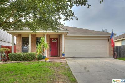 New Braunfels Single Family Home For Sale: 268 Goliad Drive