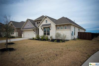 Liberty Hill Single Family Home For Sale: 4013 Discovery Well