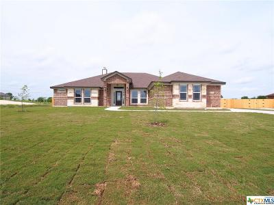 Salado Single Family Home For Sale: 4407 Green Creek Drive