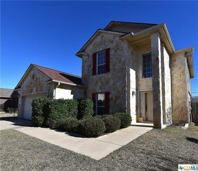 Hutto Single Family Home For Sale: 1117 Concan Drive