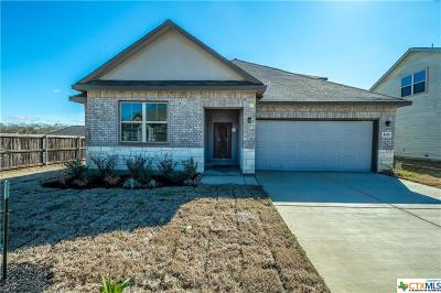 New Braunfels TX Single Family Home For Sale: $334,471