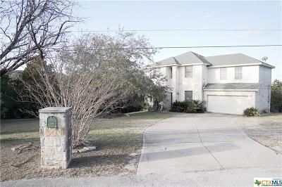Spicewood TX Single Family Home For Sale: $339,000