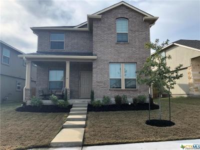 Leander Single Family Home For Sale: 1408 Blake Street