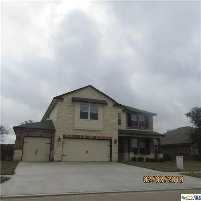 Killeen Single Family Home For Sale: 6310 Tanzanite Drive