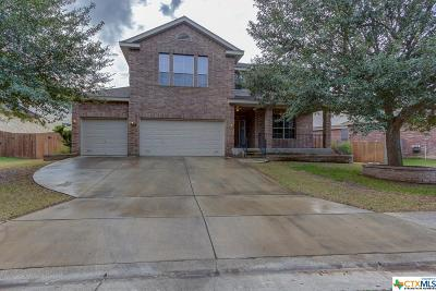 New Braunfels Single Family Home For Sale: 3119 Soledad Lane