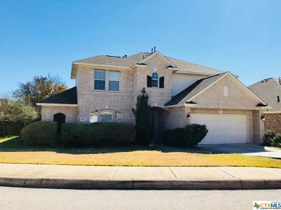 San Antonio Single Family Home For Sale: 815 Bastione