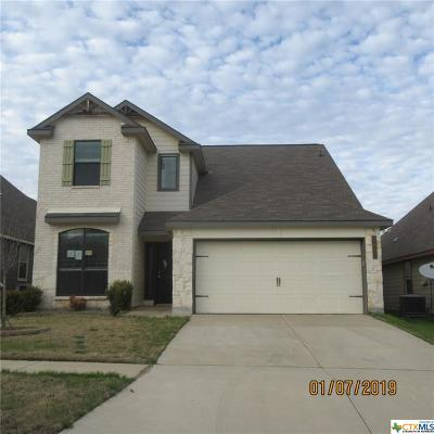 Killeen Single Family Home For Sale: 3401 Castleton Drive