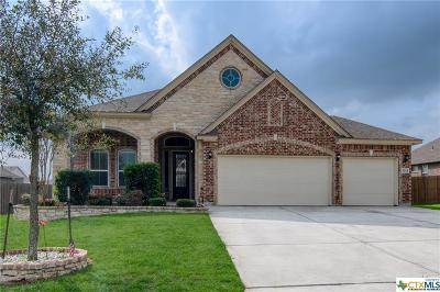 Marion Single Family Home For Sale: 3314 Joshs Way