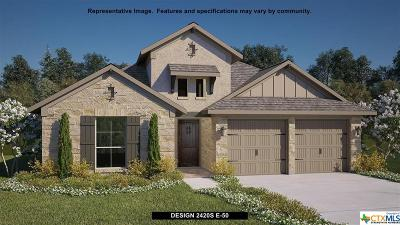 San Antonio Single Family Home For Sale: 28441 Shailene Drive