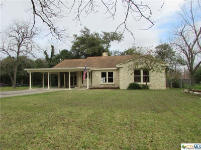 Seguin Single Family Home For Sale: 209 S Erkel