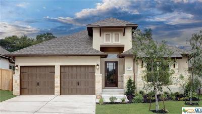 San Antonio Single Family Home For Sale: 28517 Shailene Drive