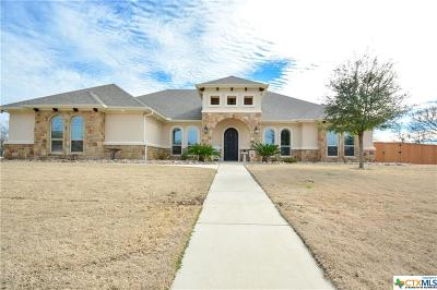 Salado Single Family Home For Sale: 515 Horton