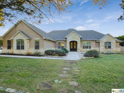 Comal County Single Family Home For Sale: 27603 Fels Mauer