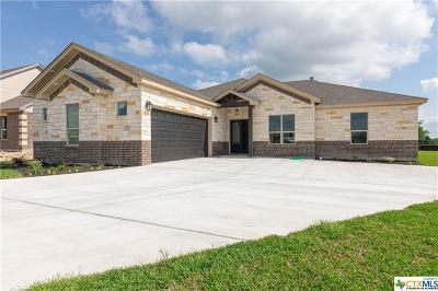 Bell County Single Family Home For Sale: 11070 La Paloma Loop