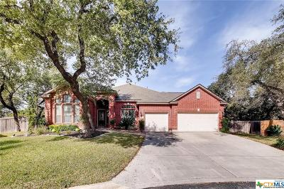 Helotes Single Family Home For Sale: 9619 French Stone