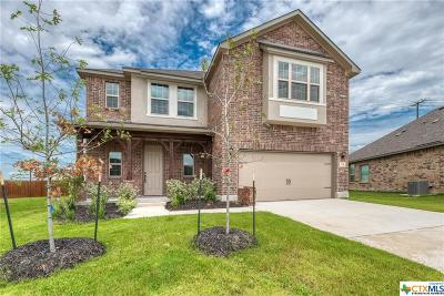 New Braunfels TX Single Family Home For Sale: $289,990
