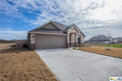 Belton, Temple Single Family Home For Sale: 3005 Crystal Ann