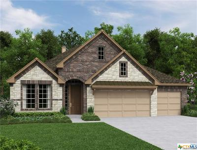 New Braunfels TX Single Family Home For Sale: $409,990