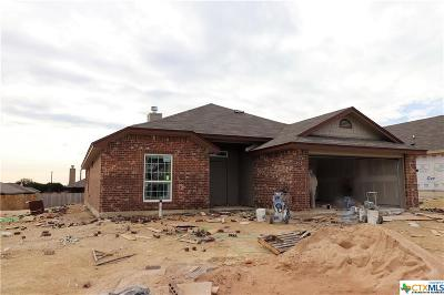 Killeen Single Family Home For Sale: 4104 Corinne Drive