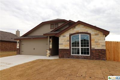 Bell County Single Family Home For Sale: 4506 Corinne Drive