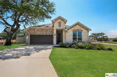 New Braunfels Single Family Home For Sale: 1193 Hammock Glen