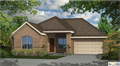 New Braunfels Single Family Home For Sale: 1137 Nutmeg Trail