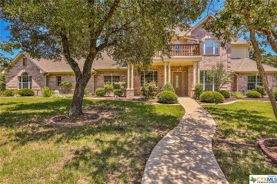 Temple, Belton Single Family Home For Sale: 256 Mikey Lane