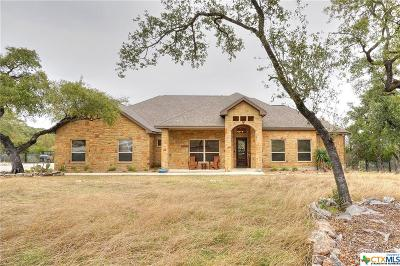 New Braunfels Single Family Home For Sale: 716 Shady Hollow