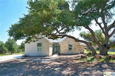 New Braunfels Single Family Home For Sale: 236 Lowman Lane