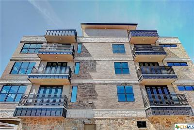 Williamson County Condo/Townhouse For Sale: 810 Rock Street #201