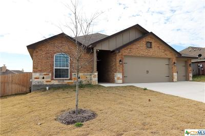 Belton, Temple Single Family Home For Sale: 911 Ridgeview Drive