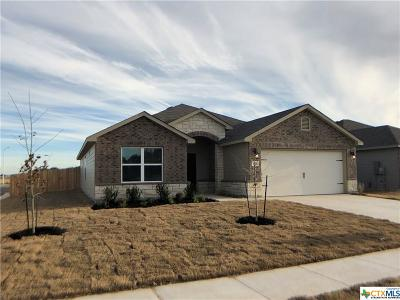New Braunfels Single Family Home For Sale: 554 Maple Leaf