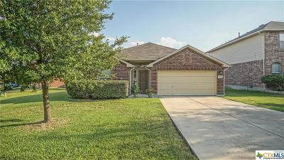 New Braunfels Single Family Home For Sale: 1250 Sandhill Crane