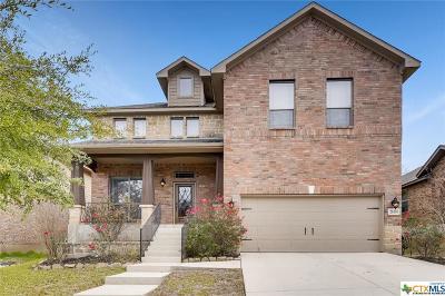 San Antonio Single Family Home For Sale: 26110 Raven Feather