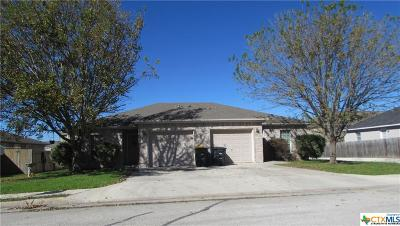 New Braunfels Multi Family Home For Sale: 3040-3042 Pine Valley