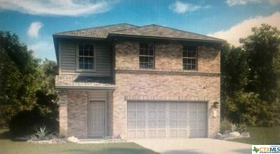 Jarrell TX Single Family Home For Sale: $195,217