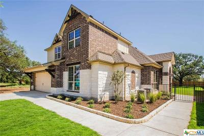 Georgetown TX Single Family Home For Sale: $362,200