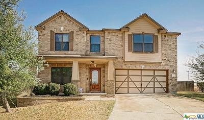 Belton, Temple Single Family Home For Sale: 701 Moon Shadow Court