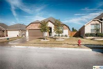 Round Rock Single Family Home For Sale: 3625 Esperanza Drive