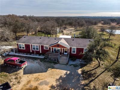 Seguin Single Family Home For Sale: 261 Sandy Oaks