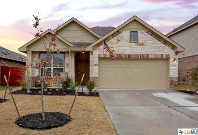 Buda Single Family Home For Sale: 418 Shale Circle