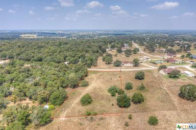 La Vernia Residential Lots & Land For Sale: 1169 Country View Drive