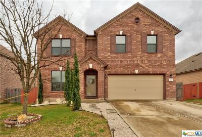 Kyle TX Single Family Home For Sale: $249,000